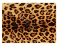 Sticky 'N Grippy Leopard Skin Screen Cleaner